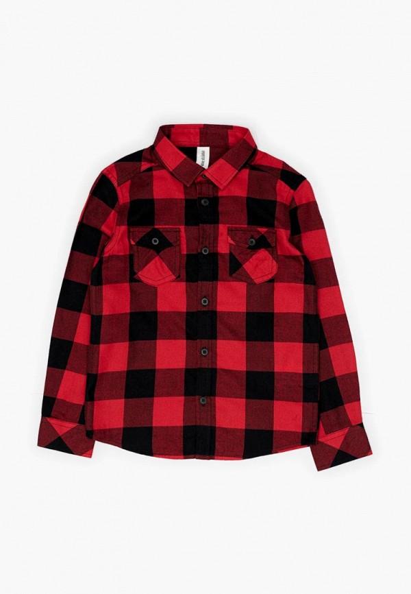 Купить Рубашка Acoola, Acoola AC008EBCVGB8, красный, Осень-зима 2018/2019