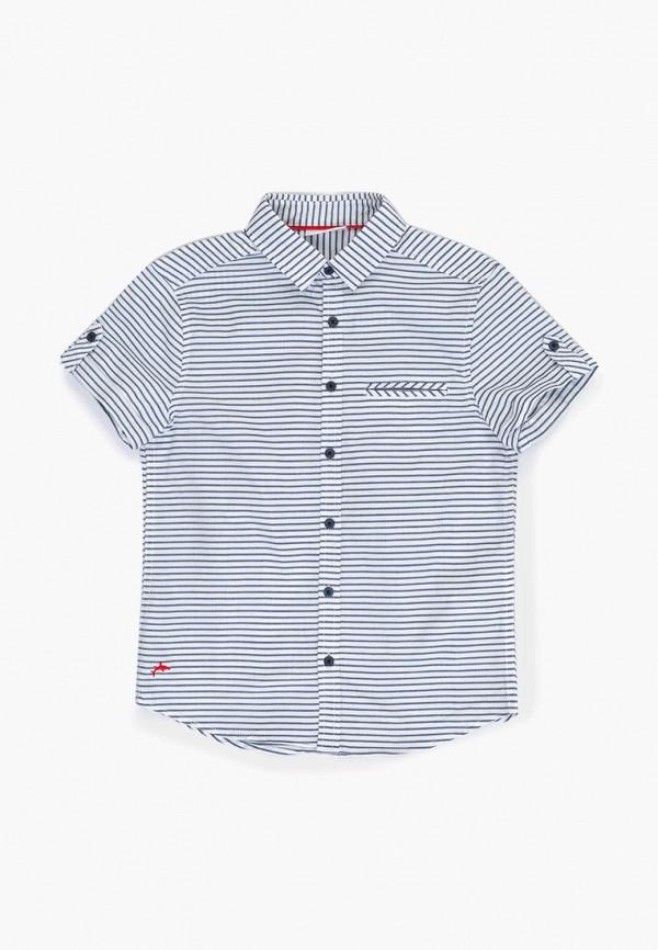 Рубашка Acoola Acoola AC008EBFIZR1 толстовка для мальчика acoola corbusier цвет синий 20110170041 500 размер 170