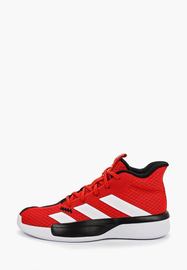 Фото - Кроссовки adidas разноцветного цвета