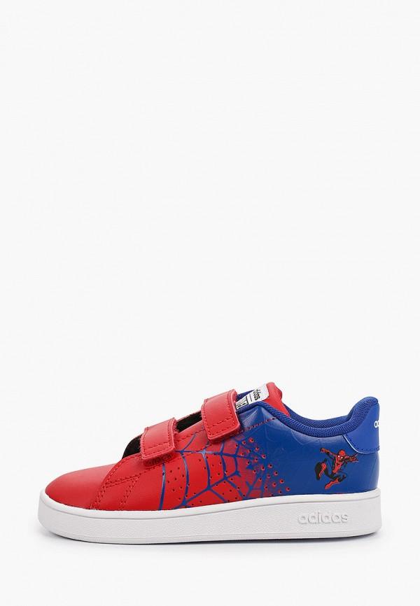 кеды adidas для мальчика, разноцветные
