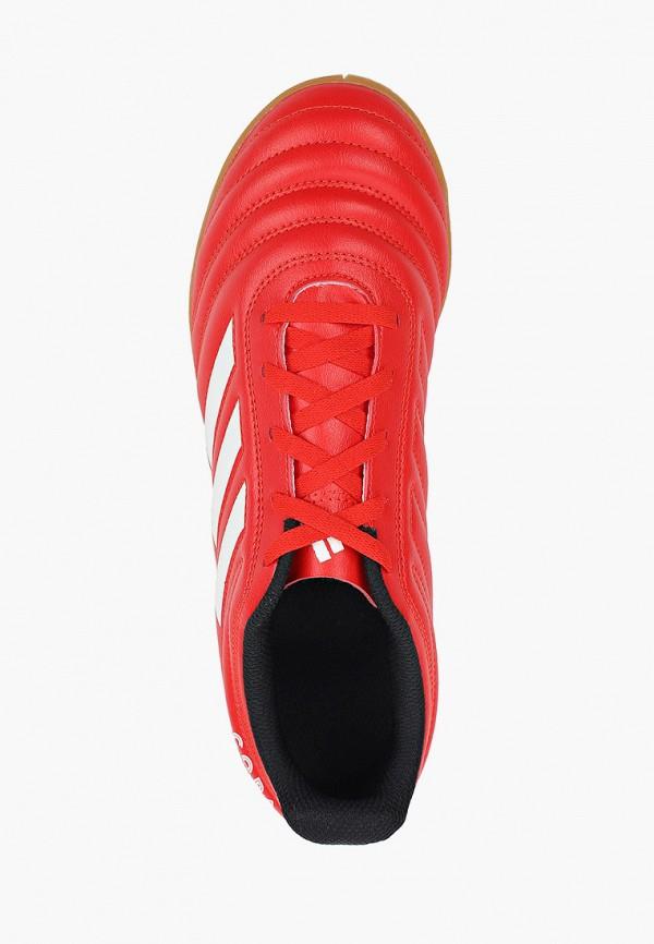 Фото 4 - Бутсы зальные adidas красного цвета