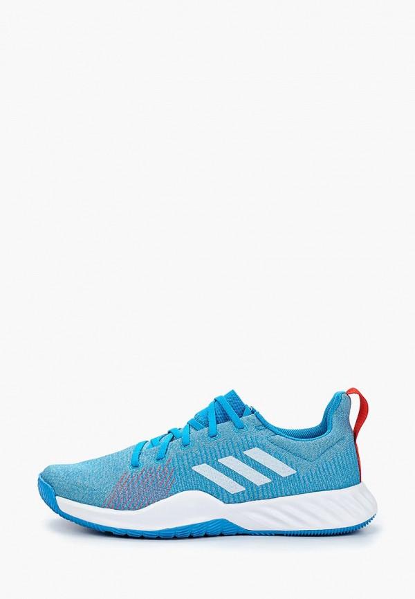 Кроссовки adidas adidas AD002AMEEGC3 цены