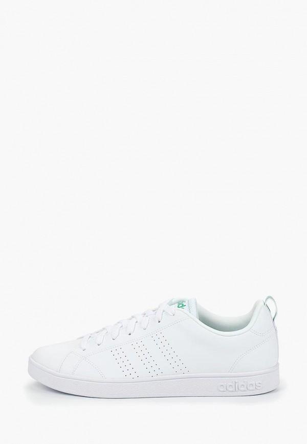 мужские кеды adidas, белые
