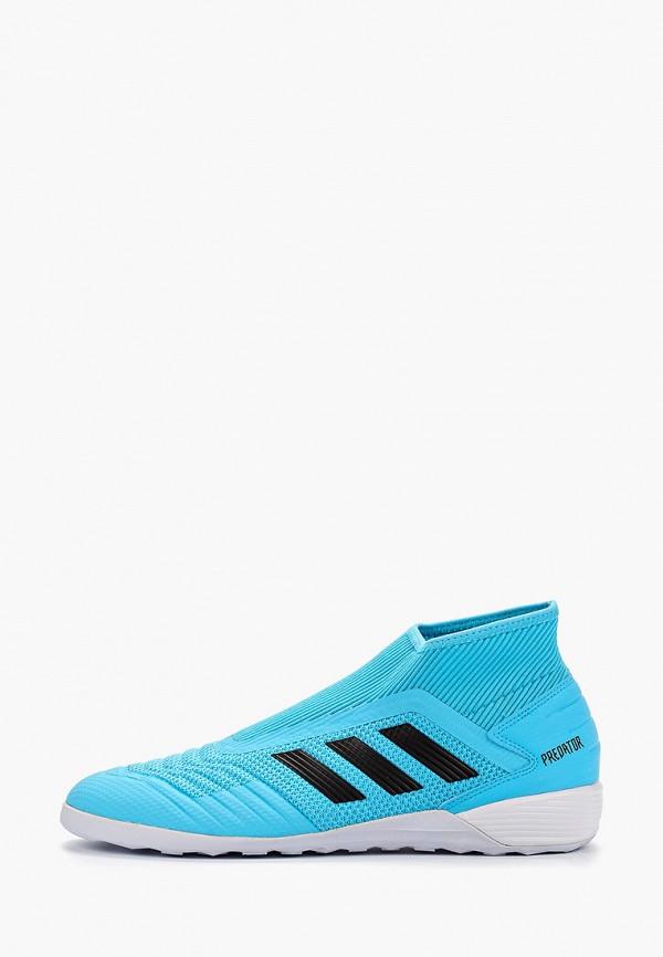 все цены на Бутсы зальные adidas adidas AD002AMFKBI0 онлайн