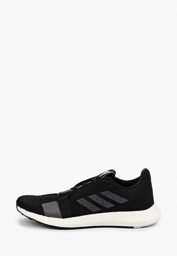 Кроссовки adidas adidas AD002AMFKTH8 кроссовки для баскетбола мужские adidas d rose dominate iii цвет белый cq0204 размер 6 38
