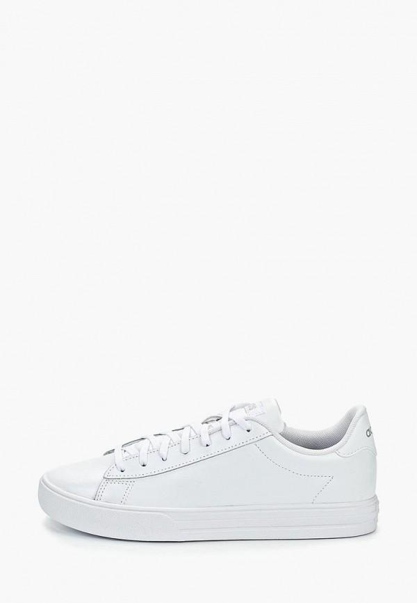 Купить Кеды adidas, DAILY 2.0, ad002aweegk5, белый, Весна-лето 2019