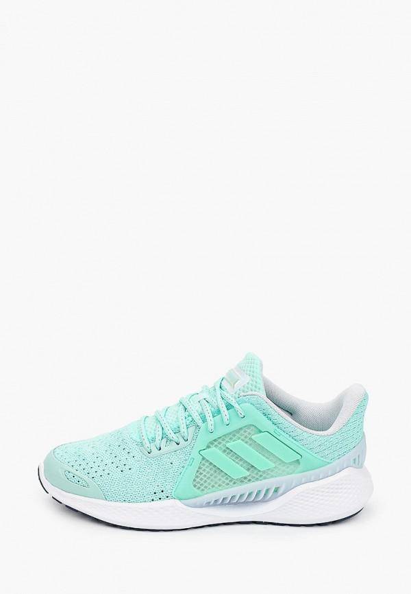 женские кроссовки adidas, бирюзовые