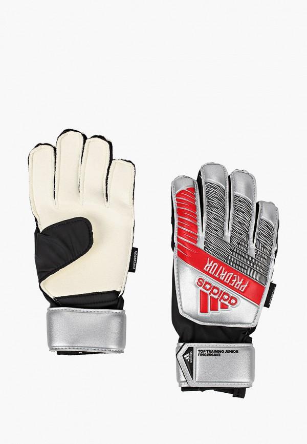 Перчатки вратарские adidas DY2602 фото