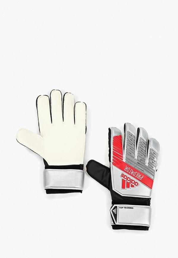 Перчатки вратарские adidas adidas AD002DUFKRI7 цена