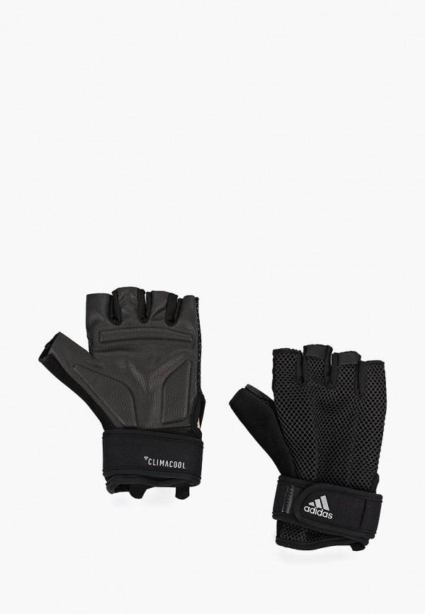 цена на Перчатки для фитнеса adidas adidas AD002DUFKRI9