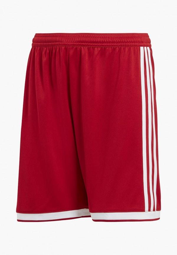 Шорты спортивные adidas adidas AD002EBALYL6 недорго, оригинальная цена