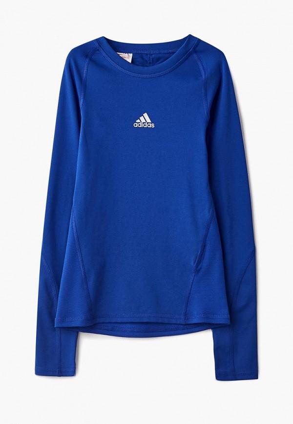 Купить Лонгслив спортивный adidas, adidas AD002EBCDAN4, синий, Осень-зима 2018/2019