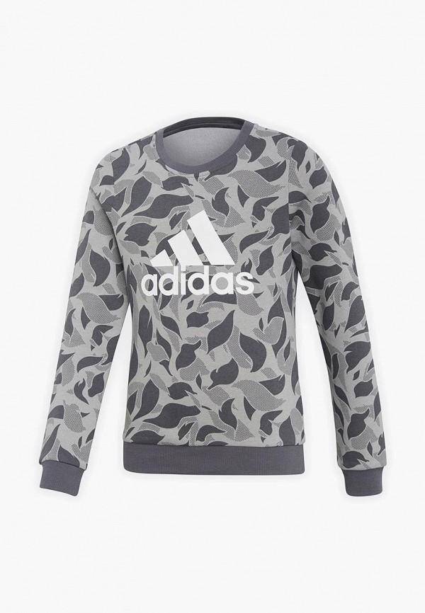 Свитшот adidas adidas AD002EBCDAO9 цена