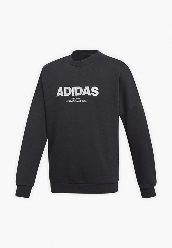 Купить Свитшот adidas, adidas AD002EBCDAP7, черный, Осень-зима 2018/2019