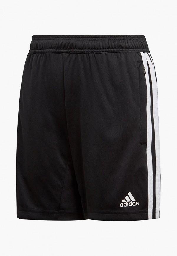 Шорты спортивные adidas adidas AD002EBEEBR5 недорго, оригинальная цена
