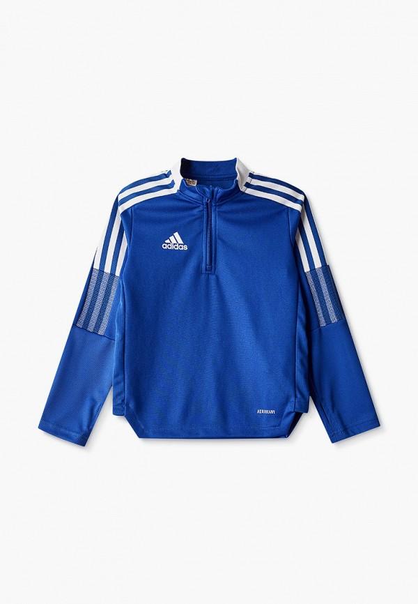Олимпийка adidas синего цвета