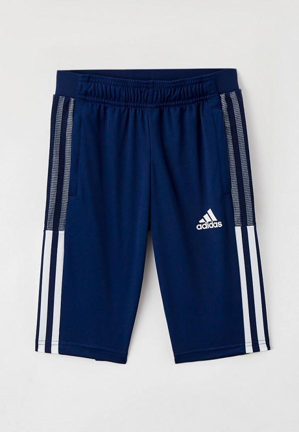капри adidas малыши, синие