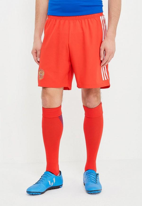 Шорты спортивные adidas adidas AD002EMALUT8