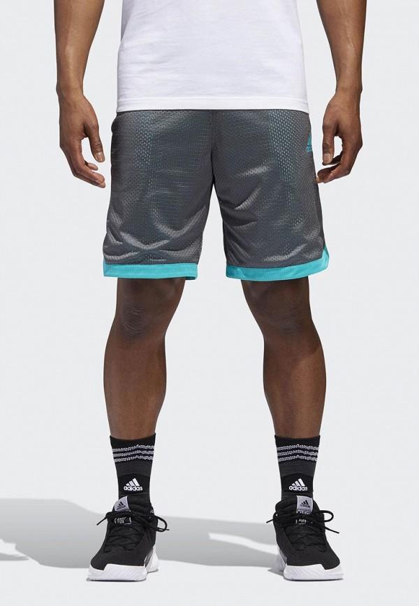 Шорты спортивные adidas adidas AD002EMCDGN5 шорты спортивные adidas adidas ad094emqif77