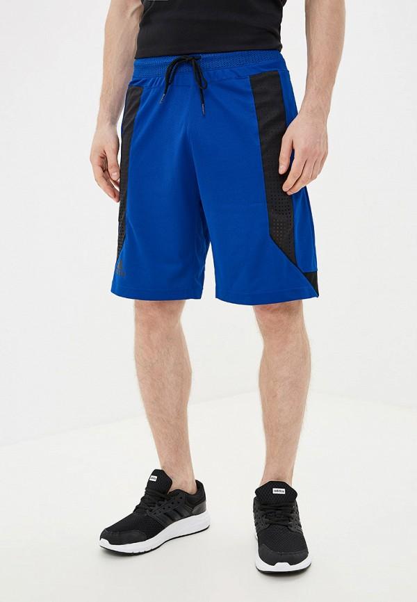 Купить Шорты спортивные adidas синего цвета