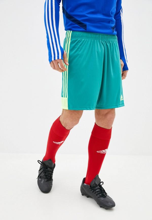 мужские спортивные шорты adidas, зеленые