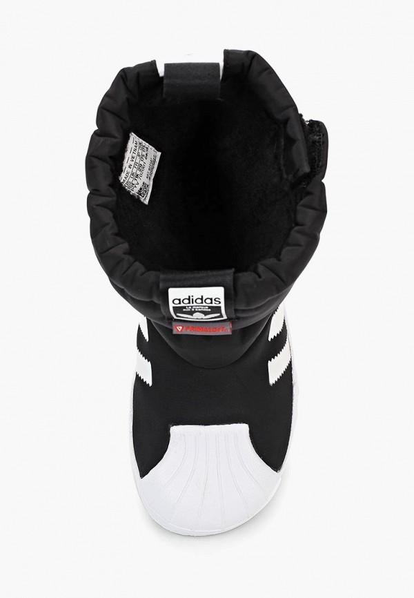Дутики adidas Originals