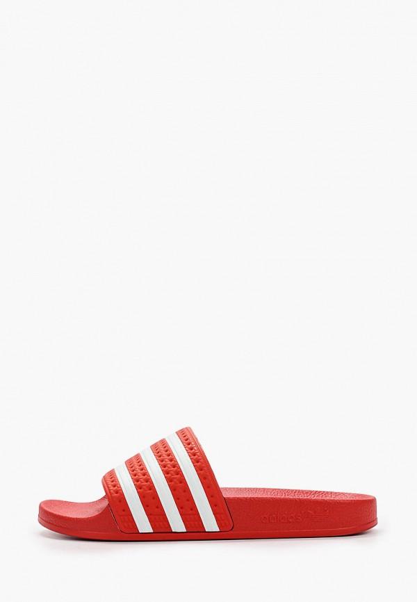 женские сланцы adidas, красные