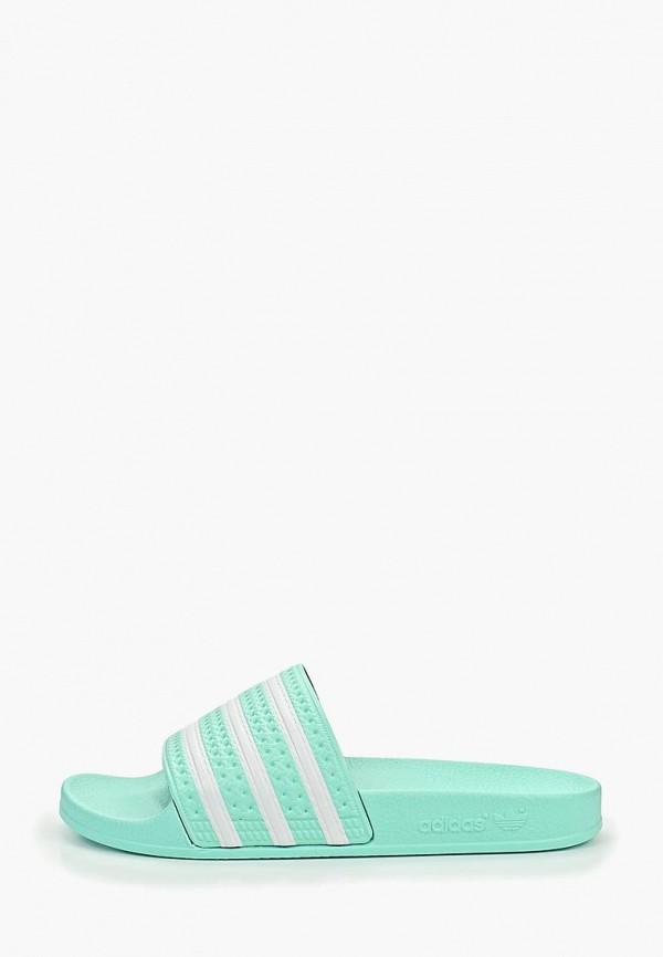 Сланцы adidas Originals adidas Originals AD093AWEDYI9 недорго, оригинальная цена