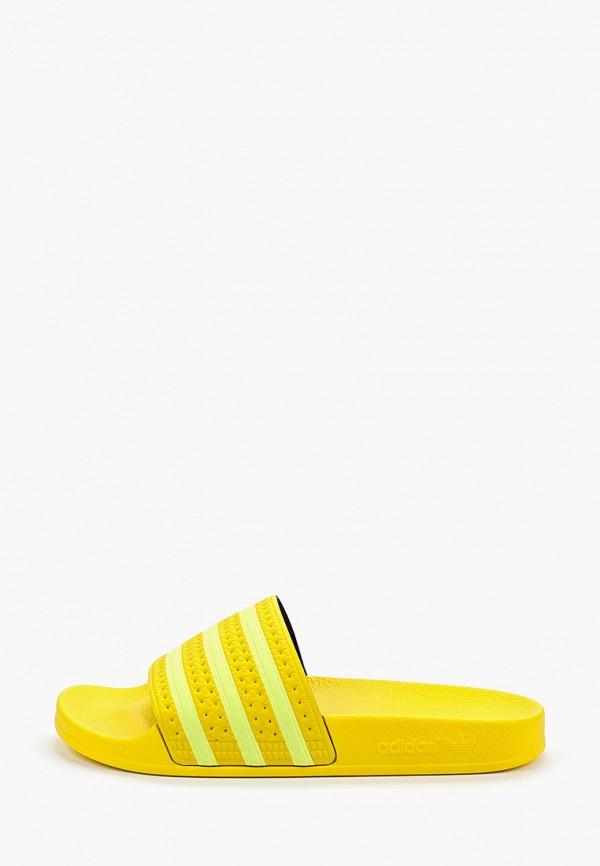 Сланцы adidas Originals adidas Originals AD093AWFLFS2 недорго, оригинальная цена