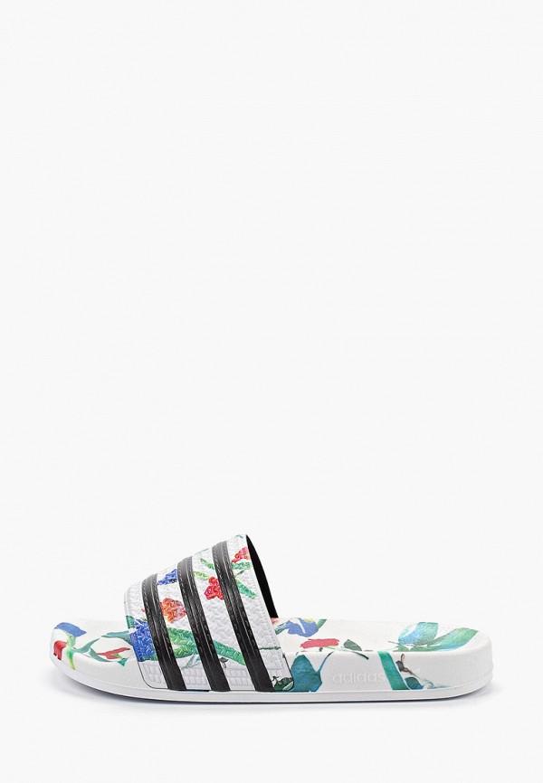 Сланцы adidas Originals adidas Originals AD093AWFLFS3 недорго, оригинальная цена