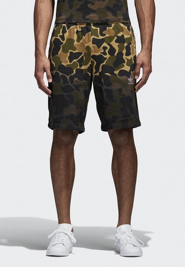Шорты спортивные adidas Originals adidas Originals AD093EMALOC9