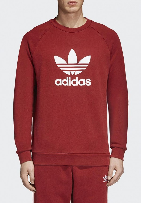 Свитшот adidas Originals adidas Originals AD093EMALOM4