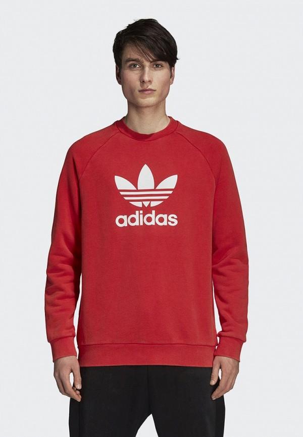 Свитшот adidas Originals adidas Originals AD093EMCCZB5