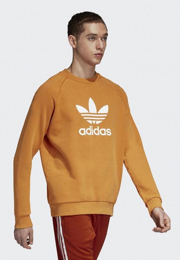 Свитшот adidas Originals adidas Originals AD093EMCCZB6