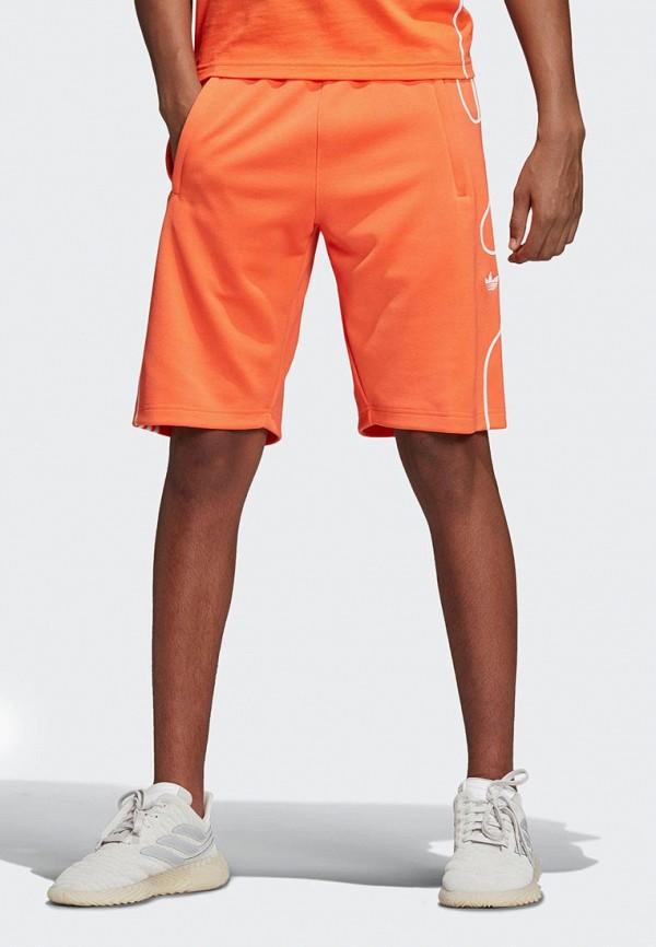 Шорты adidas Originals adidas Originals AD093EMEFDT4 adidas adidas pump