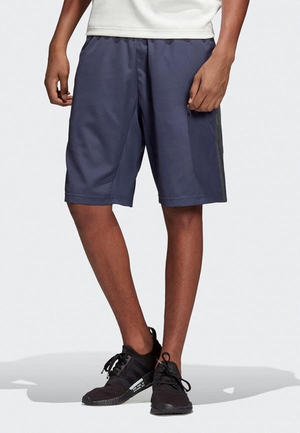Шорты спортивные adidas Originals adidas Originals AD093EMEFDT7 шорты спортивные adidas originals adidas originals mp002xm0yief