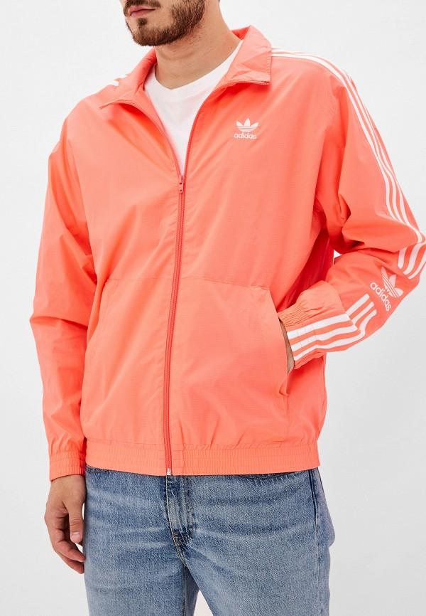 Олимпийка adidas Originals adidas Originals AD093EMFKPJ7 недорго, оригинальная цена