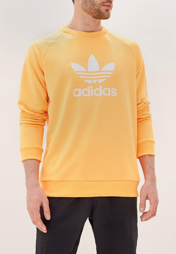 Свитшот adidas Originals adidas Originals AD093EMFKPL5