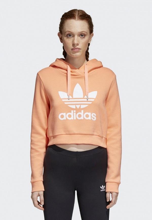 Худи adidas Originals adidas Originals AD093EWALON7 лонгслив adidas originals adidas originals ad093ewcczh3