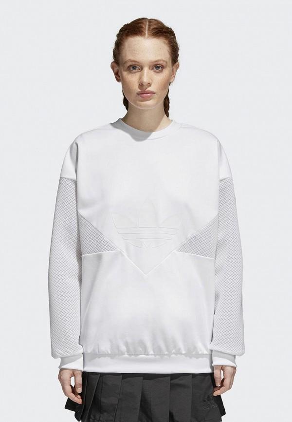 Купить Свитшот adidas Originals, CLRDO SWEATSHIR, AD093EWALOP7, белый, Весна-лето 2018
