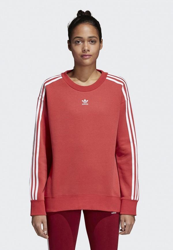 Свитшот adidas Originals adidas Originals AD093EWALOX4
