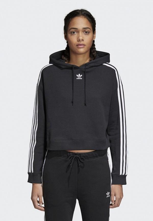 Худи adidas Originals adidas Originals AD093EWALPC9