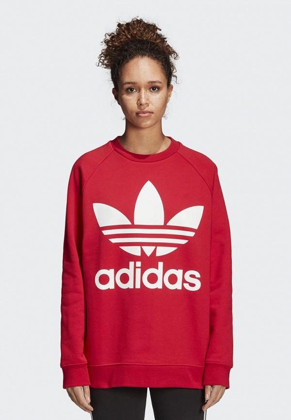 Свитшот adidas Originals adidas Originals AD093EWCCZF8