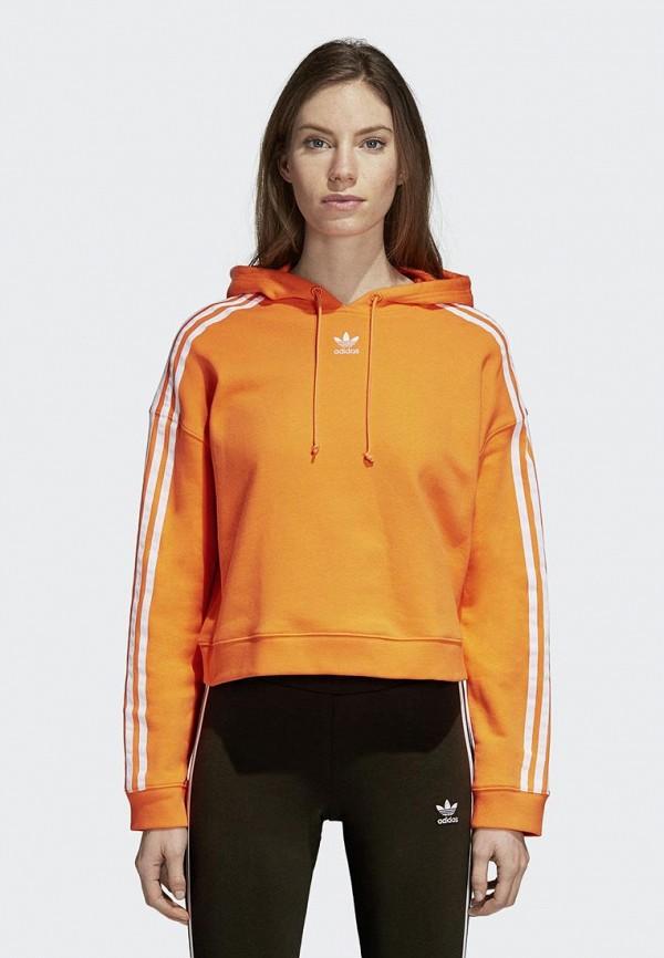 Худи adidas Originals adidas Originals AD093EWCCZG4 худи print bar fall out boy