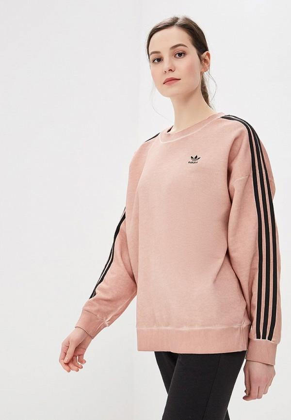 Свитшот adidas Originals adidas Originals AD093EWDKNZ4 стоимость