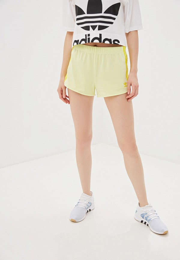купить Шорты спортивные adidas Originals adidas Originals AD093EWFKPT1 дешево