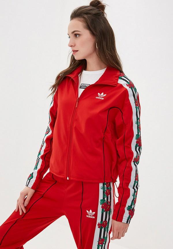 Олимпийка adidas Originals adidas Originals AD093EWFKPU5 недорго, оригинальная цена
