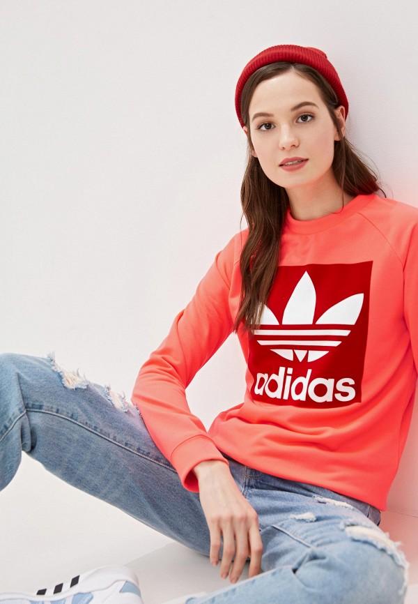 Свитшот adidas Originals adidas Originals AD093EWFKPV6 цена