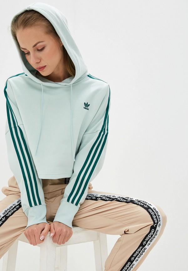 Худи adidas Originals adidas Originals AD093EWFKPW0 худи adidas originals adidas originals ad093ewfkpw4