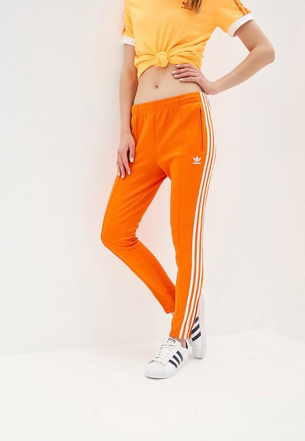 Брюки спортивные adidas Originals adidas Originals AD093EWFKPZ8
